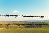 Barbed wire fence of a farm, fields and blue sky on background - 174817259