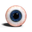 realistic human eye with blue iris isolated on white background