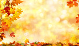 autumn background with maple leaves - 174828274
