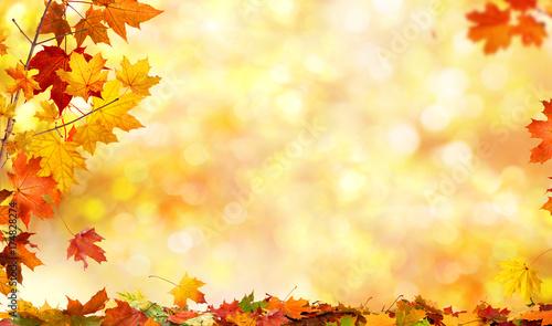 Leinwandbild Motiv autumn background with maple leaves