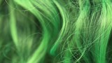 Close detail of texture of green, dyed hair fibre. - 174870260