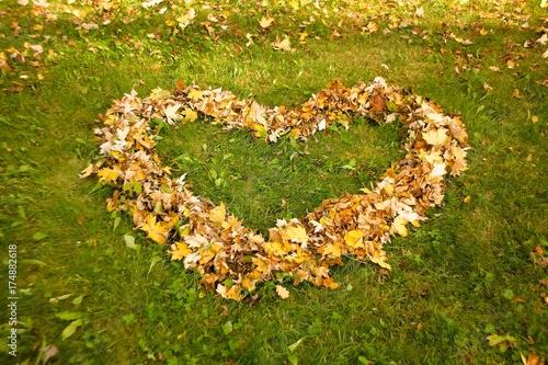 Fridge magnet Romantick autumn leaves background.