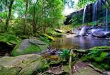beautiful tropical rainforest and stream in deep forest, Phu Kradueng National Park, Thailand - 174899217