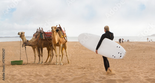 Fotobehang Marokko Female surfer holding surfboard and camels at the beach of Essaouira, Morocco, Africa.