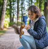 Beautiful young woman feeding a squirrel in an autumn park, a squirrel sitting on a girl - 174910668