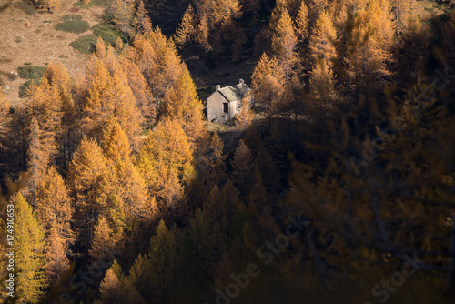 In de dag Chocoladebruin Scenics mountain fall landscape with stone lodge surrounded by larches forest in sunny autumn day outdoor.