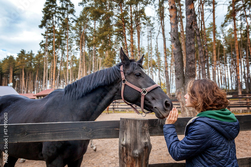 Beautiful young woman is feeding horse with hands Poster