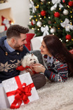 Cheerful young pair with dog at Christmas eve - 174920673