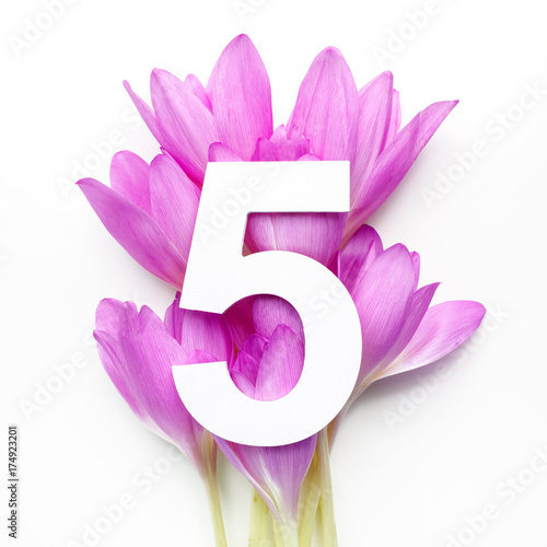 Layout with colorful flowers, leaves and number five Poster