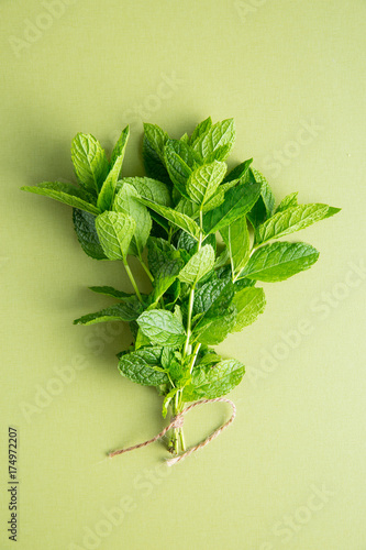Branch mint leaves.