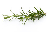 Rosemary isolated on white background, Top view. - 174979030