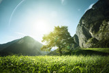 Idyllic landscape in the Alps, tree, grass and mountains, Switzerland - 174980037