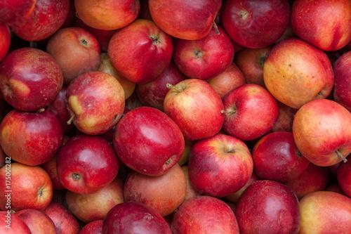 Insieme di mele rosse mature
