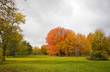 Colors of autumn background. Colors of the fall at Midwest USA. Autumn landscape with green lawn, colorful trees and gray cloudy sky. Horizontal shot.