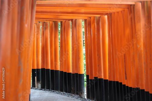 Keuken foto achterwand Kyoto 伏見稲荷大社