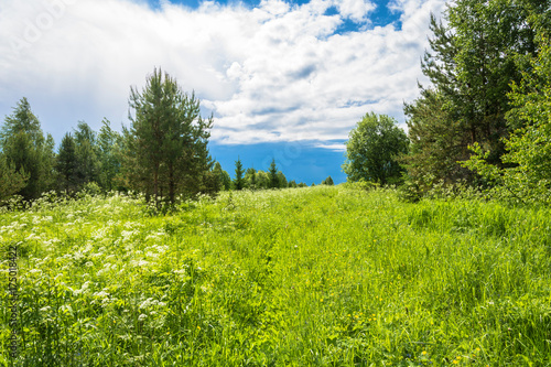Fotobehang Zomer Summer landscape with cloudy sky.