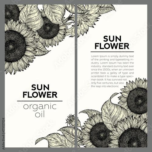 Set of two sunflower vintage design templates. Vector hand drawn illustration. Sunflower frame composition.