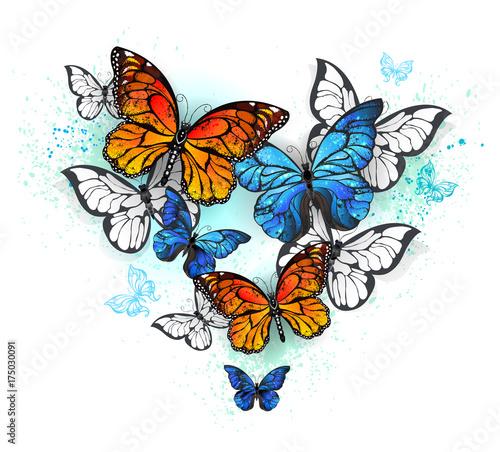 Deurstickers Vlinders in Grunge morpho and monarchs