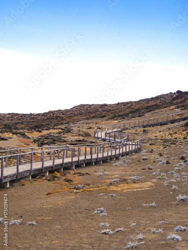 Aluminium Cappuccino Genovesa - Galapagos Islands, Ecuador