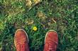 Imagen cenital de zapatillas de deporte naranjas sobre césped y una pequeña flor amarilla.