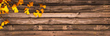 Autumnal wooden panoramic background with ginkgo biloba leaves, autumn concept - 175053698