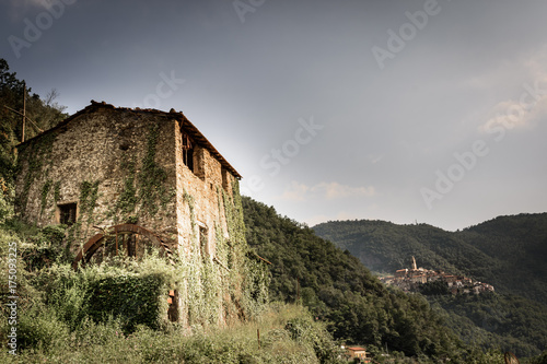 Deurstickers Liguria view of old house and Castelvittorio village,on the Liguri mountains