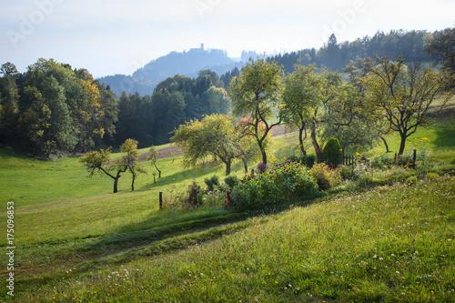 Fotobehang Landschappen Romantiktal Maseldorf Rundweg