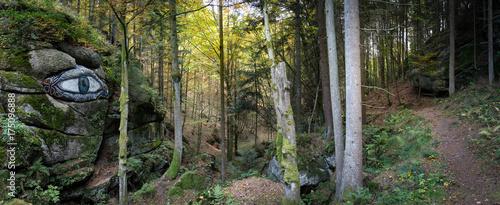 Papiers peints Photos panoramiques Romantiktal Wanderwegpanorama