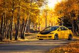 Fototapety Yellow Car Yellow Leaves