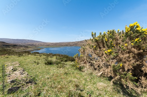 Tuinposter Pistache Scenic natural view of Scottish Highlands, United Kingdom