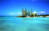 motu ilot sur le lagon turquoise de tikehau polynésie française - 175155433
