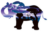 African Night with Elephant - 175171460