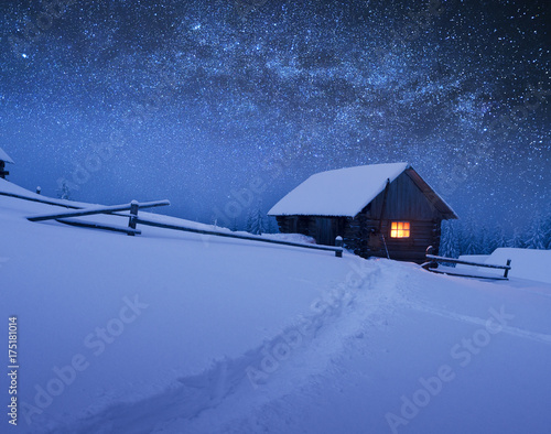 Christmas landscape with starry sky © Oleksandr Kotenko