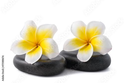 Fotobehang Plumeria Frangipani on zen pebbles