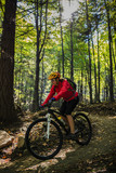 Cycling, mountain bikeing woman on cycle trail in autumn forest. Mountain biking in autumn landscape forest. Woman cycling MTB flow uphill trail. - 175202873