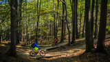 Cycling, mountain biker couple on cycle trail in autumn forest. Mountain biking in autumn landscape forest. Man and woman cycling MTB flow uphill trail. - 175204290