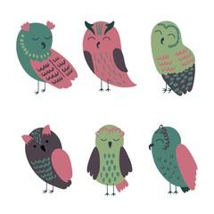 Set of cartoon owls in beautiful colors