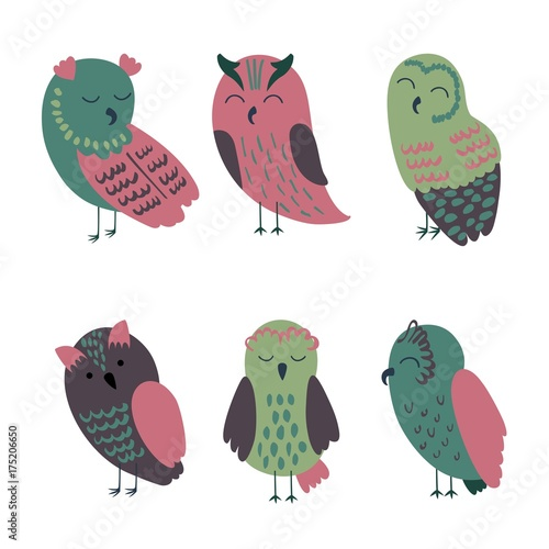 Foto op Aluminium Uilen cartoon Set of cartoon owls in beautiful colors