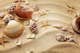 seashells and sand - 175212410