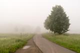 The bike path in the fog - 175223679