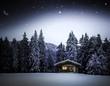 Hütte im Winterwald - 175223853