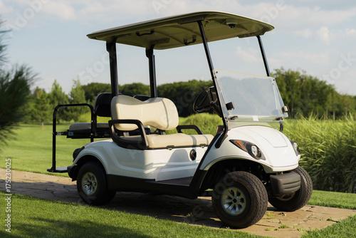 Stylish white golf cart - 175230025