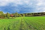 Ruhiger Wiesenweg durch herbstliche Felder - 175245655