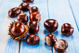Chestnuts - 175255432