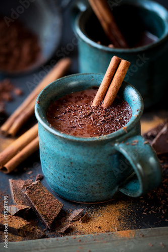 Foto op Canvas Chocolade Cup of hot chocolate with a stick of cinnamon and the flakes of grated dark chocolate