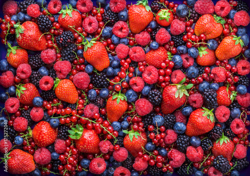 Berries overhead closeup colorful large assorted mix of strawbwerry, blueberry, raspberry, blackberry, red curant in studio on dark background - 175272040