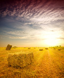 Hay bale in the countryside - 175274037