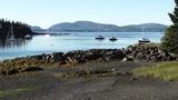 Scenic sailboats off coast of Sorrento, Maine - 175274615