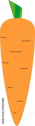 Cartoon carrot on white background
