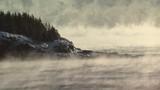 Sea Smoke off Great Head in Maine, scenic - 175283059